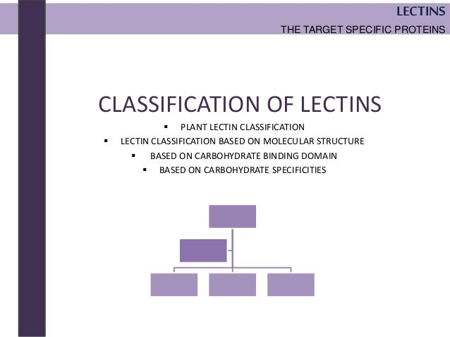 lectins the target specific proteins the next