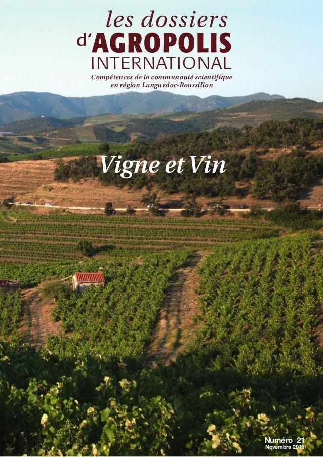 Numéro 21 Novembre 2015 Compétences de la communauté scientifique en région Languedoc-Roussillon Vigne et Vin