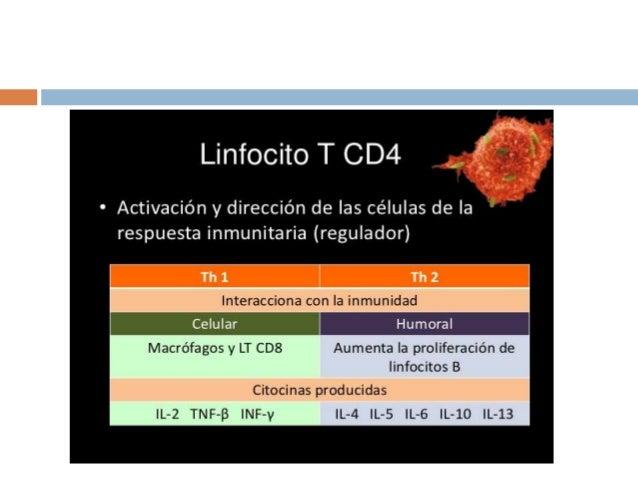 • La interacción del VIH con el sistema inmune se divide en 3 fases – 1.- Síndrome Retrovírico Agudo (3-4 semanas) – 2.- F...