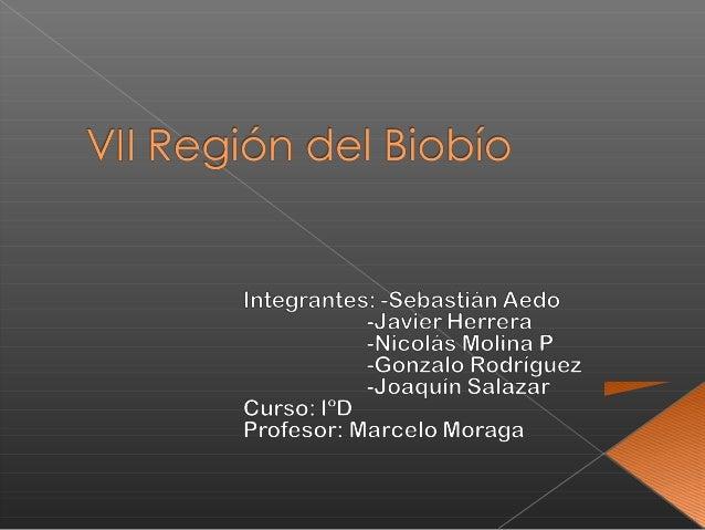  Relieve: La Octava Región conserva los cuatro accidentes geográficos de las regiones anteriores, pero con característica...