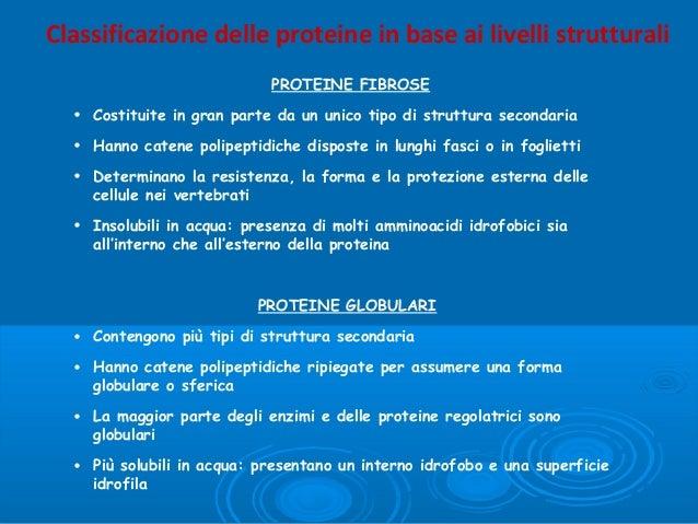 Classificazione delle proteine in base ai livelli strutturali PROTEINE FIBROSE • Costituite in gran parte da un unico tipo...
