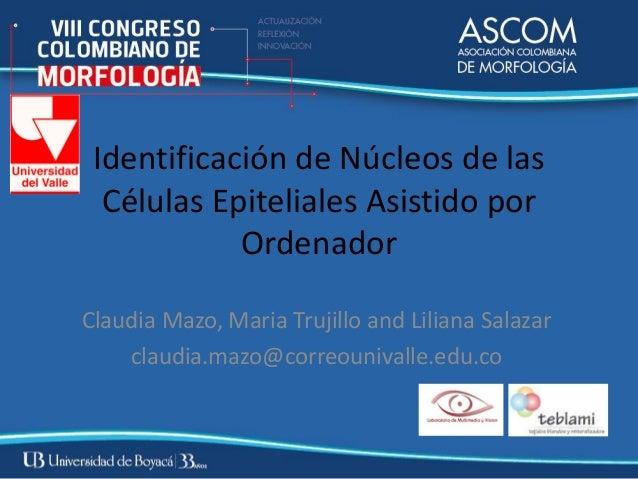 Identificación de Núcleos de las  Células Epiteliales Asistido por            OrdenadorClaudia Mazo, Maria Trujillo and Li...