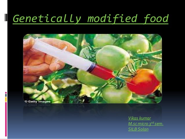 essays on genetically modified crops and food security