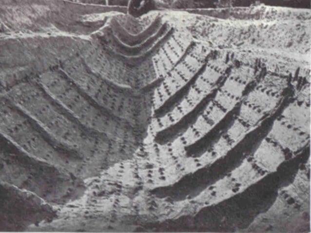 karakteristieke ronde  schilden  goed bewaard exemplaar  gevonden in Gokstad-schip  Tijdens naderen van de  vijandelijke k...