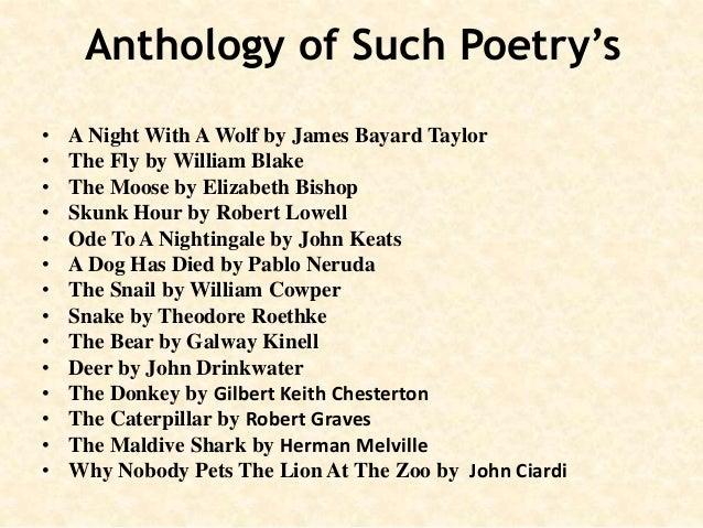 Pratt and melville shark poems essay