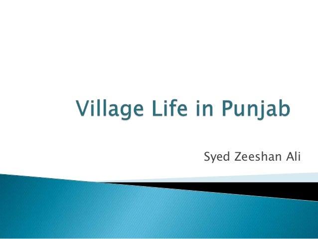 Syed Zeeshan Ali