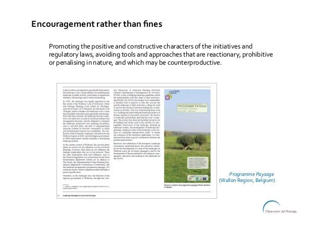 Encouragementratherthanfines Promotingthepositiveandconstructivecharactersoftheinitiativesand regulatorylaws...