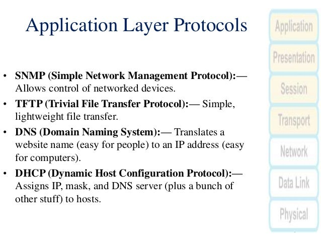 domain name system application layer