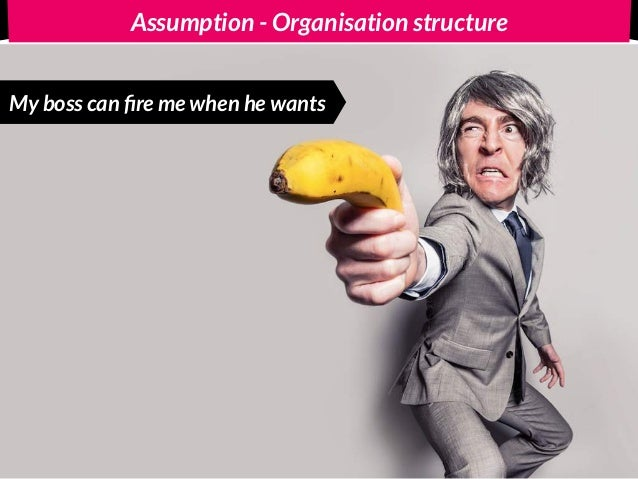 Opposite - Organisation structure I can fire my boss when I want
