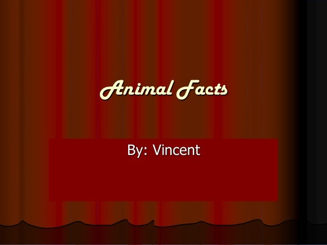Animal Facts  By: Vincent