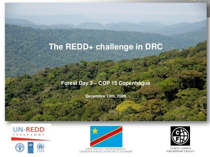The REDD+ challenge in DRC