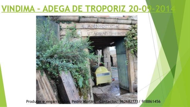 VINDIMA – ADEGA DE TROPORIZ 20-09-2014  Produtor e engarrafador: Pedro Martins Contactos: 962682771/ 918861456
