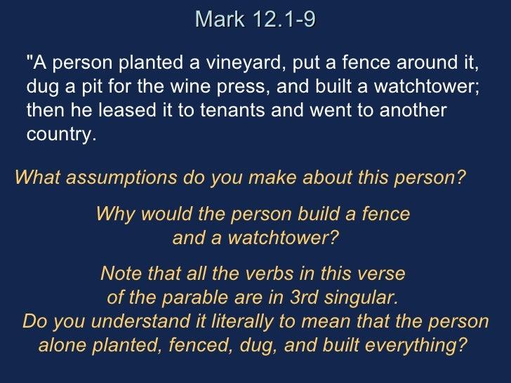 Veeyard Meaning: Vineyard Tenants