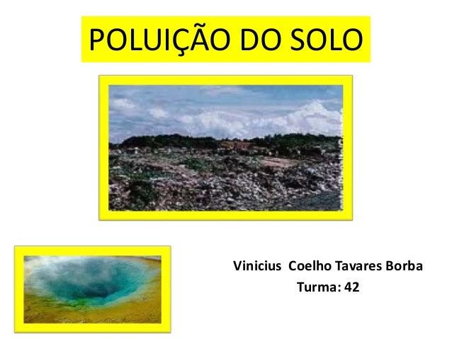 Vinicius Coelho Tavares BorbaTurma: 42POLUIÇÃO DO SOLO