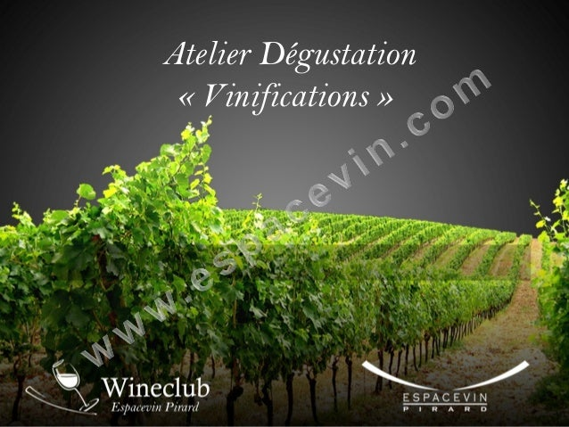 Atelier Dégustation « Vinifications »