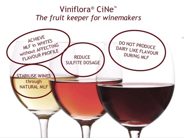 Viniflora® CiNe™        The fruit keeper for winemakers          EVE      ACHI ITES                          DO NOT       ...