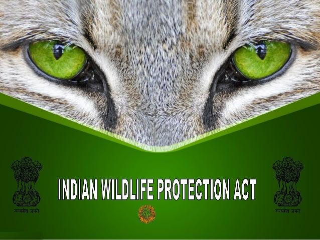 wild life protection act Wild life protection 1 the wild life protection act arrangement of sections 1 short title 2 interpretation animals and birds 3 game sanctuaria.