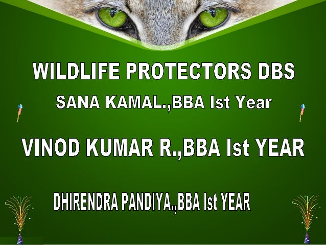 wild life protection act of india The wildlife protection act, 1972 is an act of the parliament of india enacted for  protection of plants and animal species among other reforms, the act.