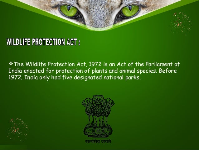 wild life protection act In this video, i have covered the wild life protection act, 1972 in hindi for himachal judicial prelims exam in and easy way this is a post to study the.