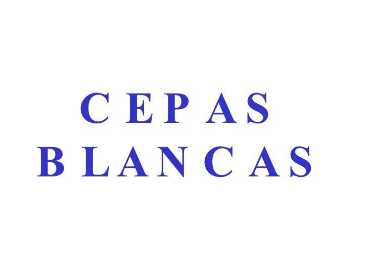 CEPAS BLANCAS
