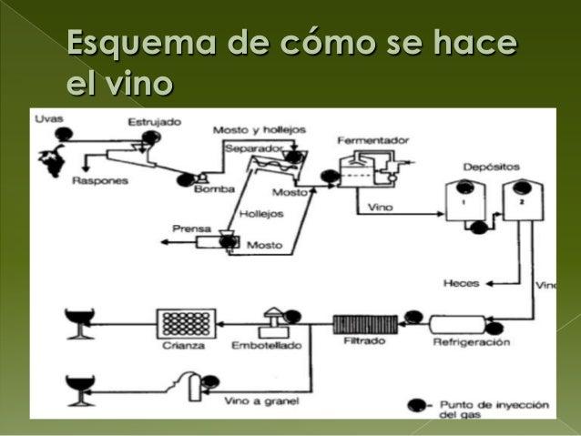 Circuito Productivo Del Vino : Breve introducción al mundo del vino