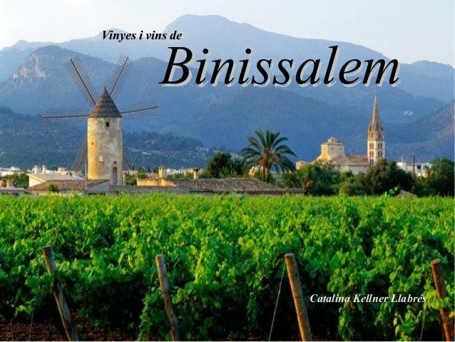 Vinyes i vins deVinyes i vins de BinissalemBinissalem Catalina Kellner Llabrés