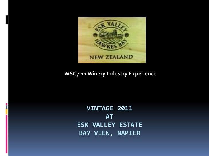 WSC7.11 Winery Industry Experience <br />Vintage 2011 atEsk Valley EstateBay view, Napier<br />
