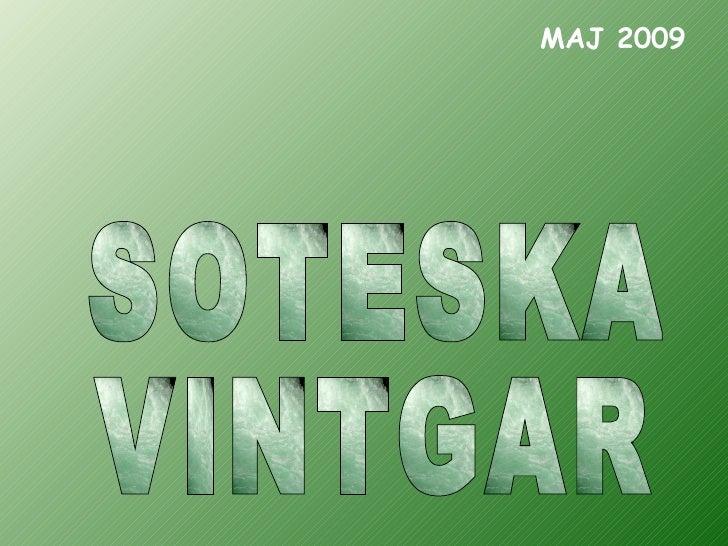 SOTESKA VINTGAR MAJ 2009