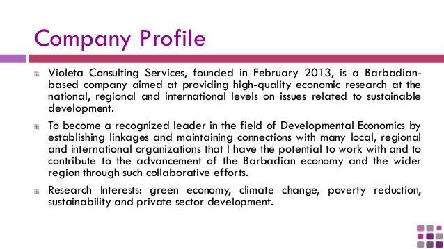 Consultancy Service Company : Violeta consulting services company description