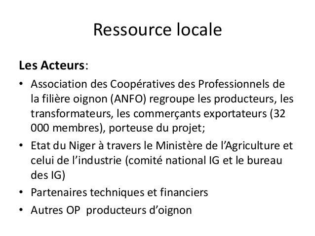 Ressource locale Les Acteurs: • Association des Coopératives des Professionnels de la filière oignon (ANFO) regroupe les p...