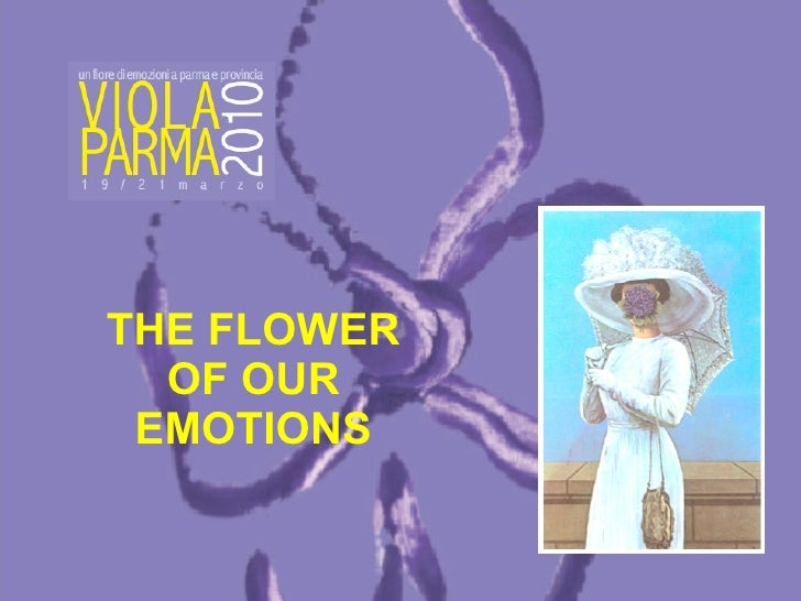 THE FLOWER OF OUR EMOTIONS