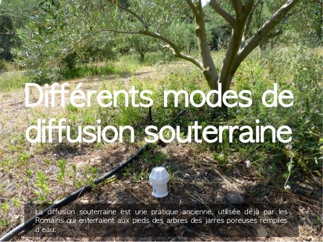 Différents modes de  diffusion souterraine  La diffusion souterraine est une pratique ancienne, utilisée déjà par les  Rom...