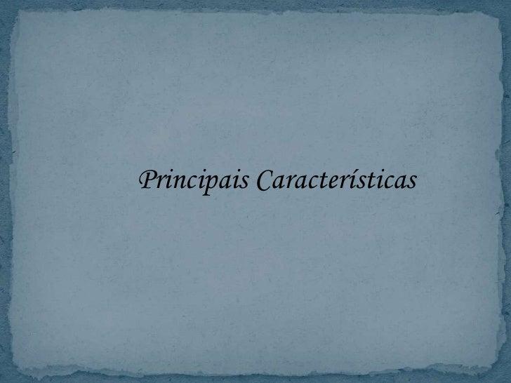 PrincipaisCaracterísticas<br />