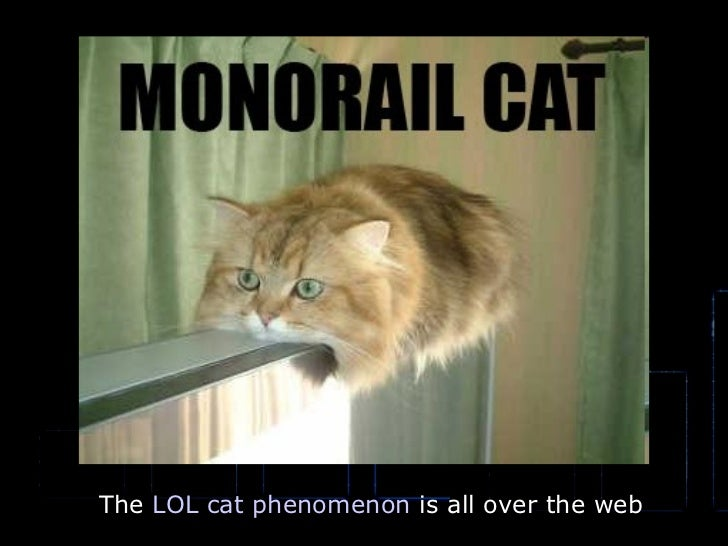 The  LOL cat phenomenon  is all over the web