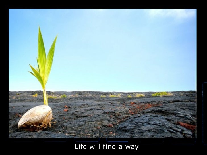 Life will find a way