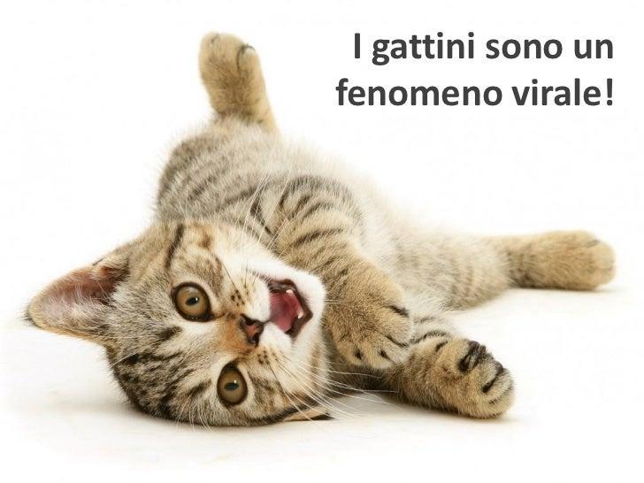 Viral marketing - Daniele Ghidoli Slide 3