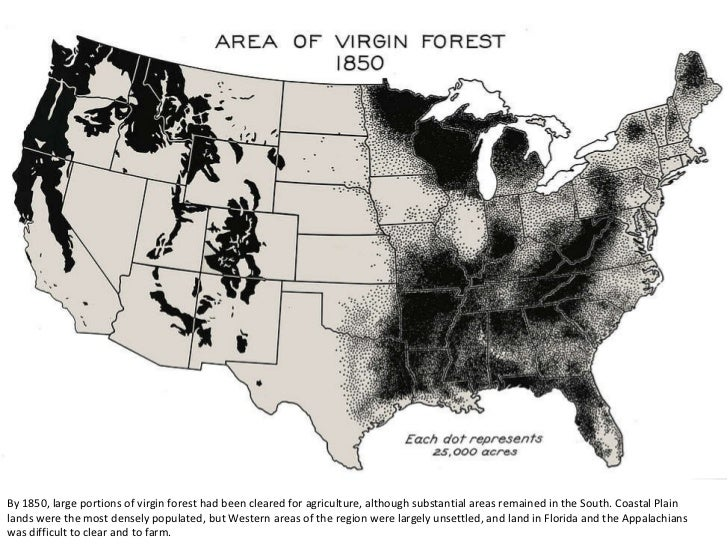 Map Of Usa Forests.Virgin Forests Cover In The U S