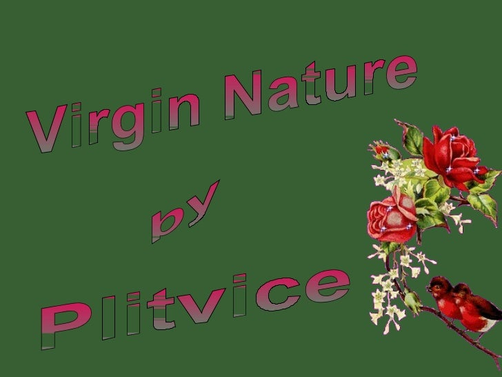 Virgin Nature by Plitvice