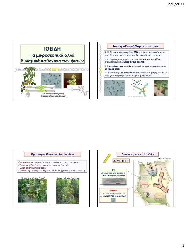 5/20/2011 1 ΙΟΕΙΔΗ Σα μικροςκοπικά αλλά δυναμικά πακογόνα των φυτϊν Δρ. Λάμπροσ Παπαγιάννθσ, Ινςτιτοφτο Γεωργικϊν Ερευνϊν ...