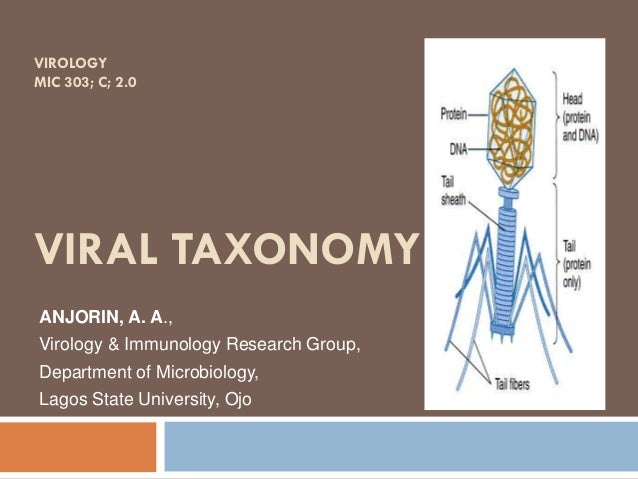 VIROLOGY MIC 303; C; 2.0 VIRAL TAXONOMY ANJORIN, A. A., Virology & Immunology Research Group, Department of Microbiology, ...