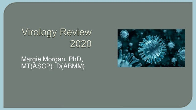 Margie Morgan, PhD, MT(ASCP), D(ABMM)