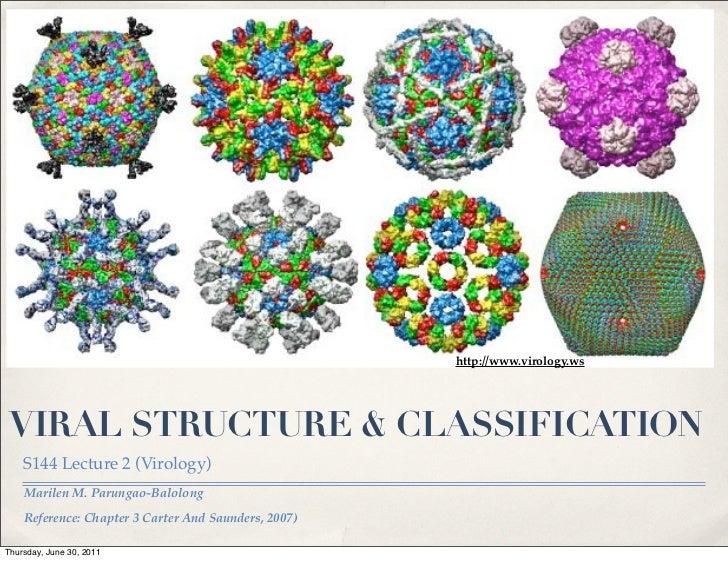 http://www.virology.ws VIRAL STRUCTURE & CLASSIFICATION    S144 Lecture 2 (Virology)    Marilen M. Parungao-Balolong    Re...