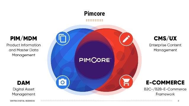 SINTRA DIGITAL BUSINESS Pimcore 3