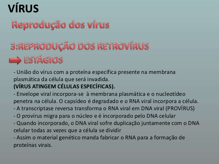 VÍRUS<br />VÍRUS<br />Reprodução dos vírus<br />3:REPRODUÇÃO DOS RETROVÍRUS <br />ESTÁGIOS  <br />- União do vírus com a p...