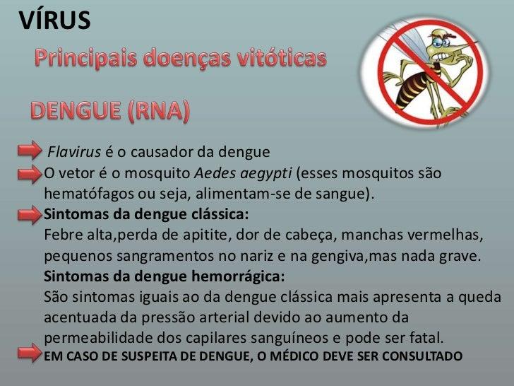 VÍRUS<br />Principais doenças vitóticas<br />DENGUE (RNA)<br />Flavirus é o causador da dengue<br />O vetor é o mosquito A...