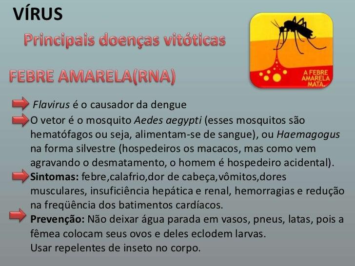VÍRUS<br />Principais doenças vitóticas<br />FEBRE AMARELA(RNA)<br />Flavirus é o causador da dengue<br />O vetor é o mosq...