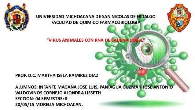 """UNIVERSIDAD MICHOACANA DE SAN NICOLAS DE HIDALGO FACULTAD DE QUIMICO FARMACOBIOLOGIA """"VIRUS ANIMALES CON RNA DE CADENA DOB..."""