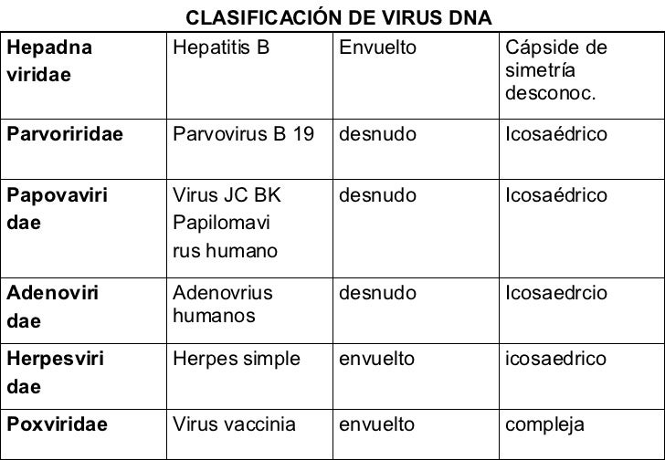 CLASIFICACIÓN DE VIRUS DNA compleja envuelto Virus vaccinia Poxviridae icosaedrico envuelto Herpes simple Herpesviri dae I...