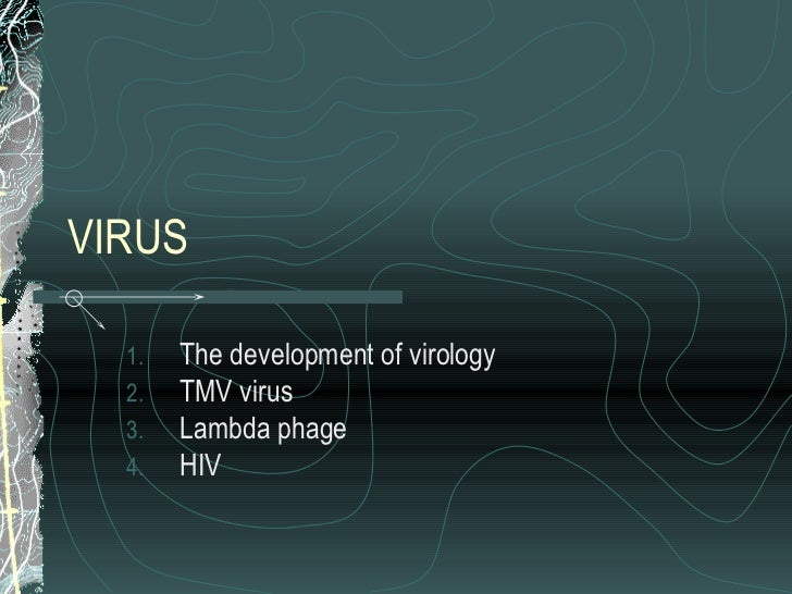 VIRUS <ul><li>The development of virology </li></ul><ul><li>TMV virus </li></ul><ul><li>Lambda phage </li></ul><ul><li>HIV...