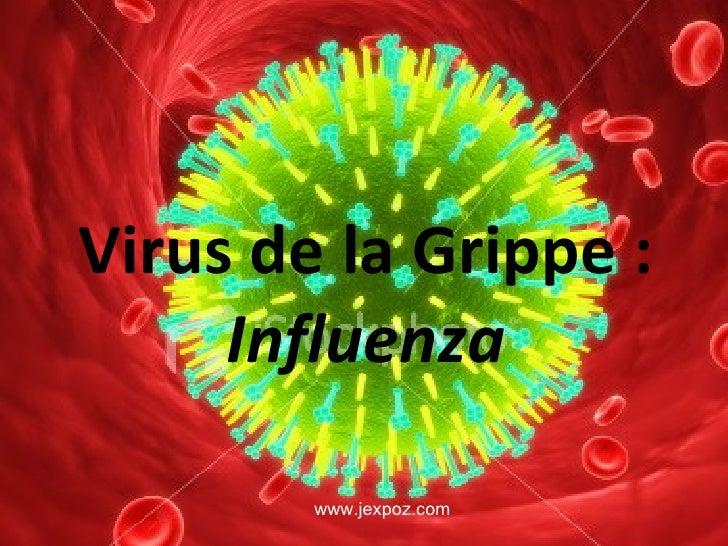 Virus de la Grippe :  Influenza www.jexpoz.com